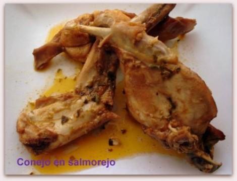 Conejo-en-salmorejo-canario
