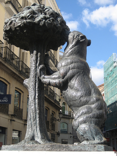 oso-y-madrono