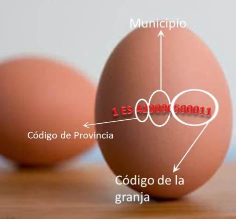 Código de huevos