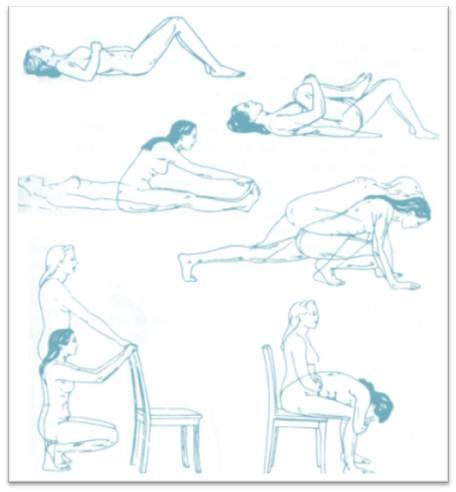 ejercicios buenos que nos ayudaran con la espalda